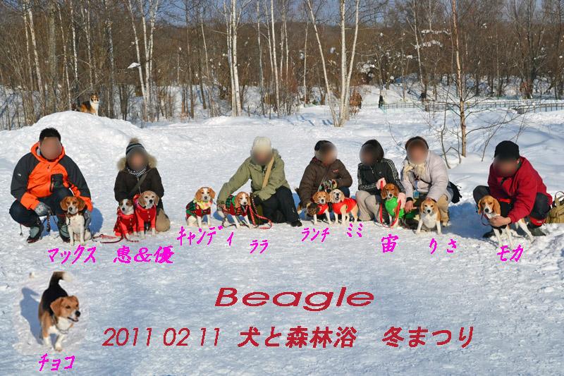 2011_0211nwan 190-80