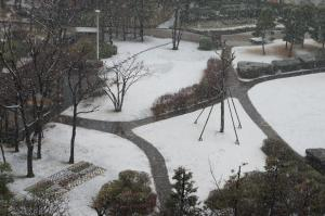 2月公園雪