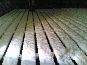 20110214雪2