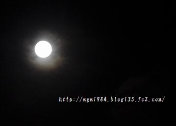 IMGP2744.jpg