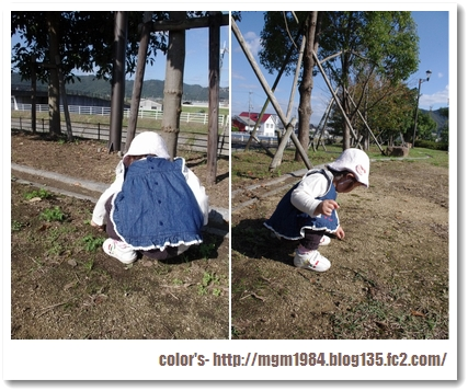 IMGP3014.jpg