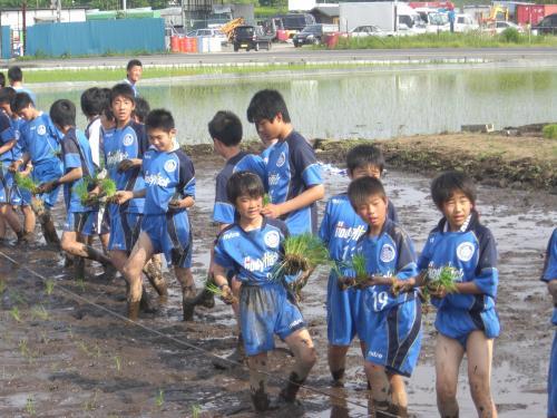2011田植え集合1