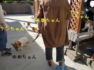 CIMG0328_20100321210014.jpg