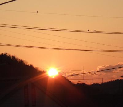 2010_01010018.jpg