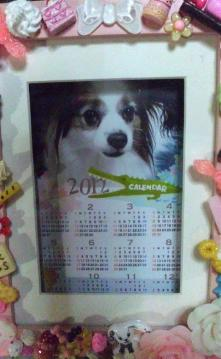 diary120116.jpg