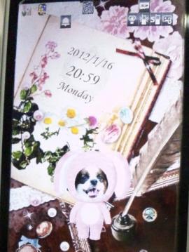 diary120117-2.jpg