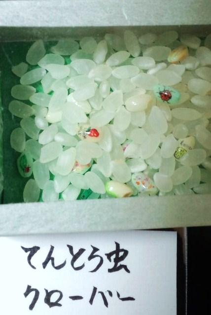 ok!2011_0106_191614-CA3H0902.jpg