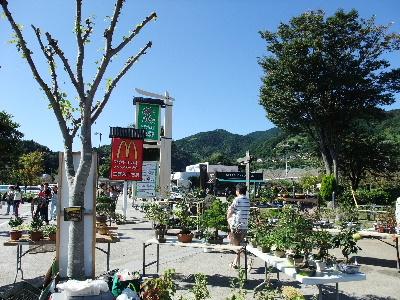 20101011東名上りー富士川SAー風景1