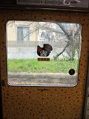 たま電車 扉
