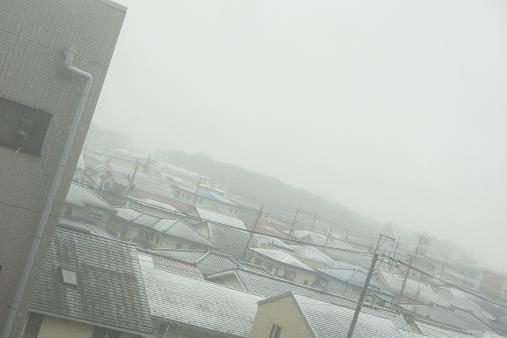 2012.1.20日常 雪降りw; 1