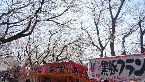 2012.4.12分 日曜日お花見日和 ①午前の部 11