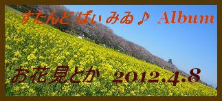 アルバム用 お花見とか2012.4.8 2