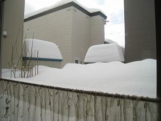 0117雪かき07