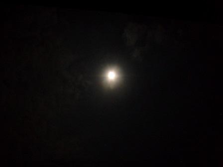 2013年十五夜 (5)