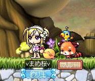 Maple100126_132358.jpg