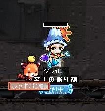 Maple100127_000926.jpg