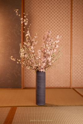 sakura washitsu