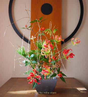 2011正月花