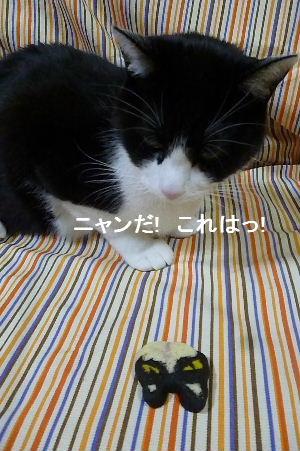 2012_0323ナッキー0043