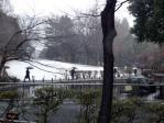 雪1201201
