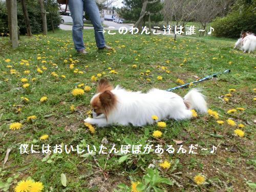 彦根オフ204163