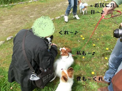 彦根オフ204162