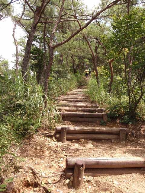20110729継鹿尾山3