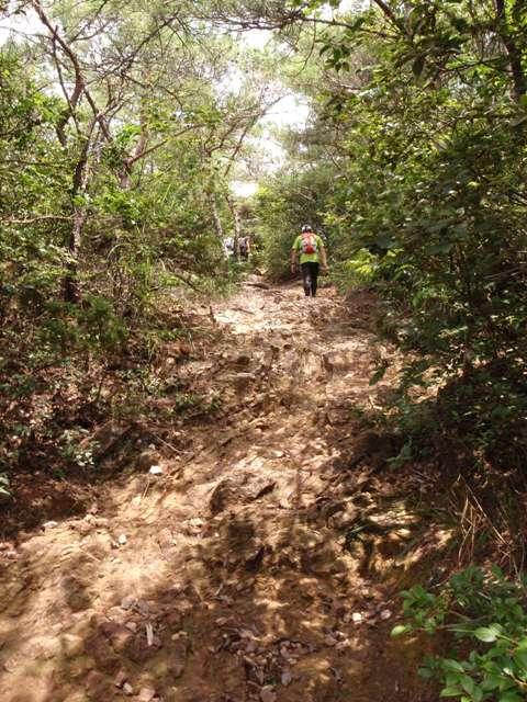 20110729継鹿尾山2