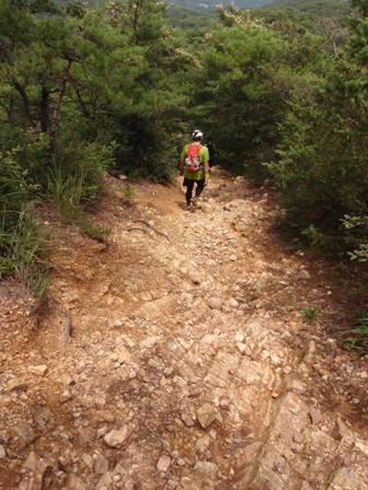 20110729継鹿尾山7