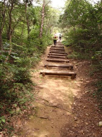 20110729継鹿尾山8
