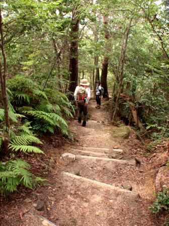 20110731-19最後の急階段