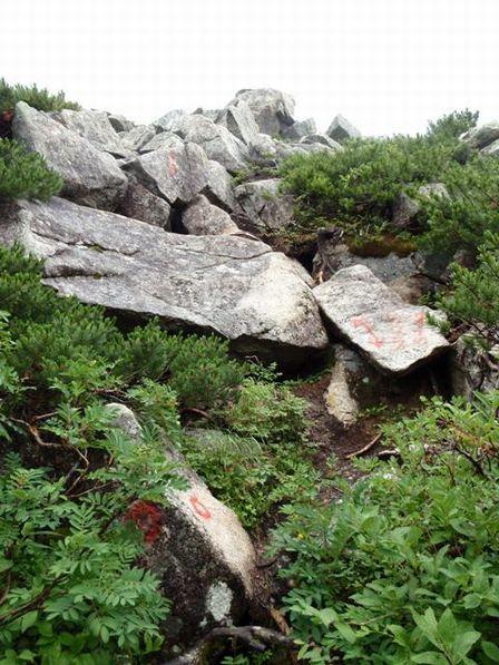 20110818-6 屏風へ岩登り