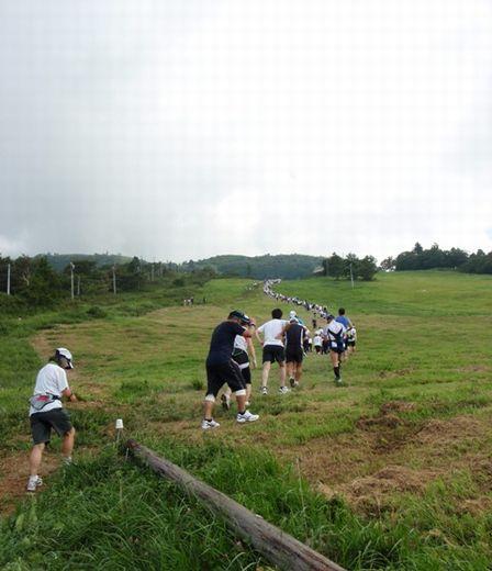 20100828-04 草原