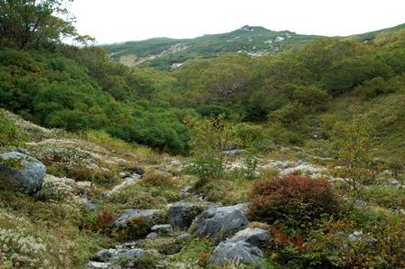20110923_09駒峰へ4秋の装い