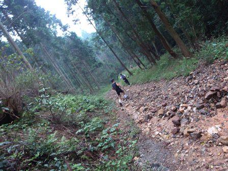 20110930-11林道