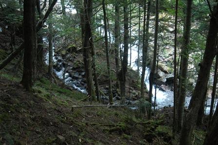20111001-04本来の道は水浸し