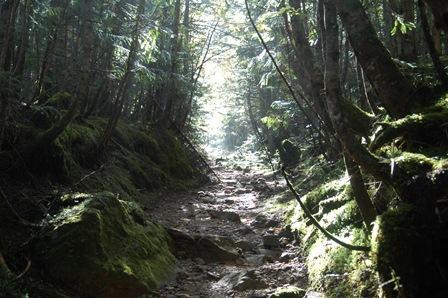 20111001-11森を抜けるとそこには
