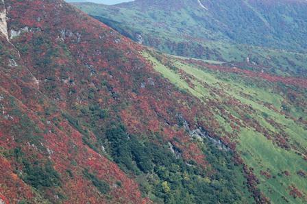 20111008-10朝日岳紅葉の山肌