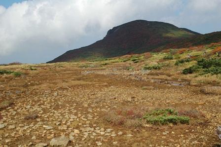 20111009-25湿原kara