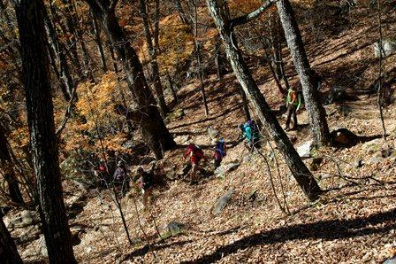 20111030-04登山道振り返り