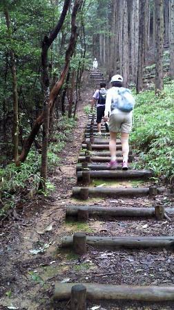 20110722道樹名物階段