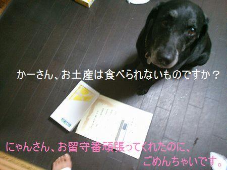 moblog_ece0d879_20130922190250285.jpg