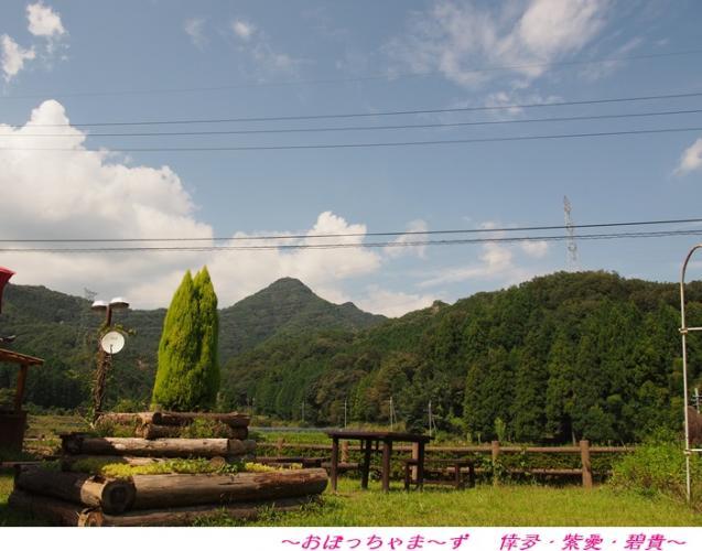 P9220083-1.jpg