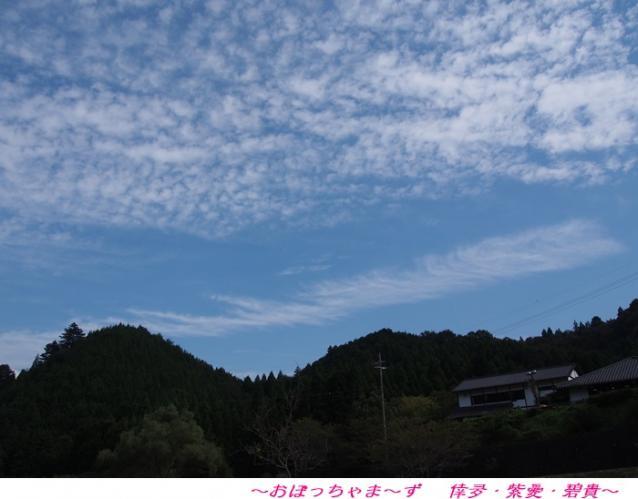 P9220226-1.jpg