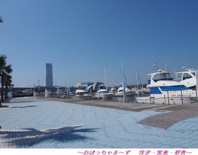 P9240511-1.jpg