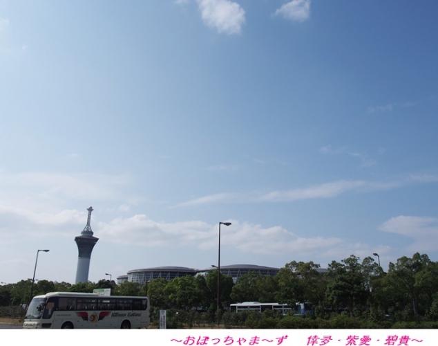 PA030506-1.jpg