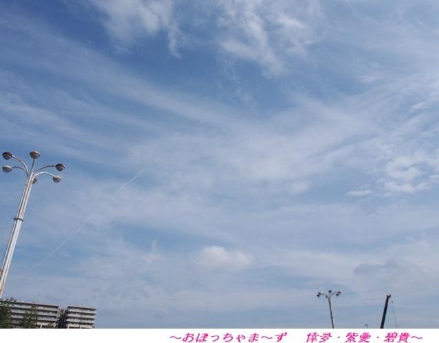 PA030507-1.jpg