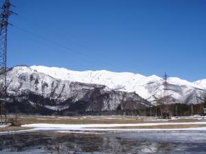 2011.4.5近所より