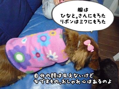 おしゃれP1330953