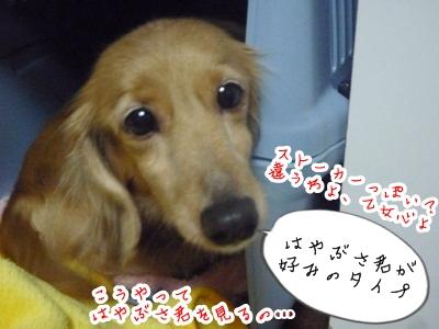 幸子P1330686